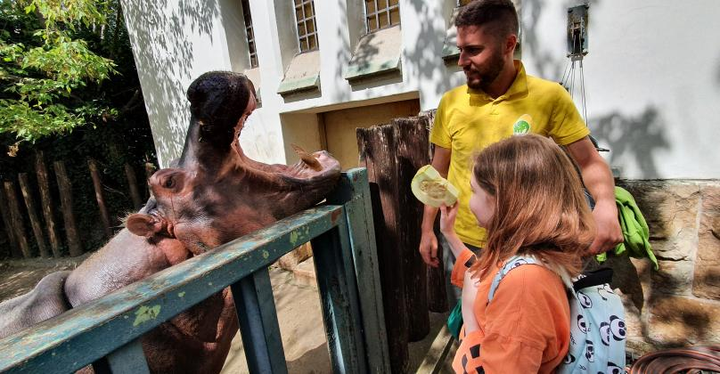 Őszi Zoo Tábor 2021
