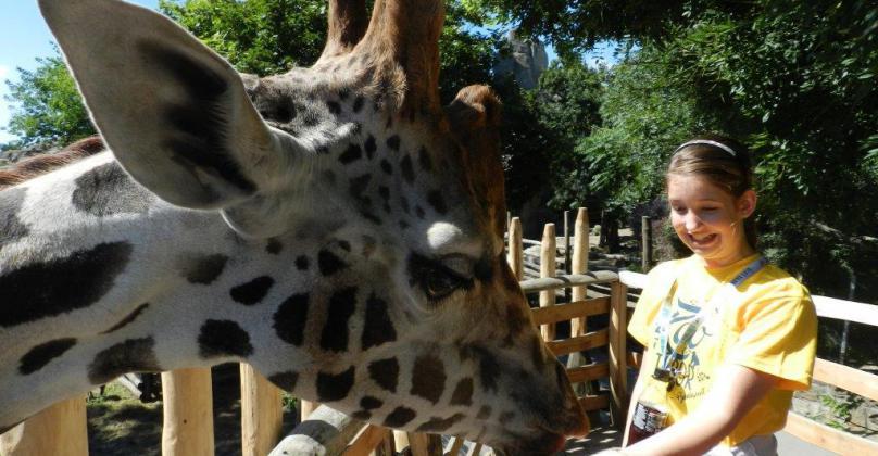 Miért pont a Zoo tábor?