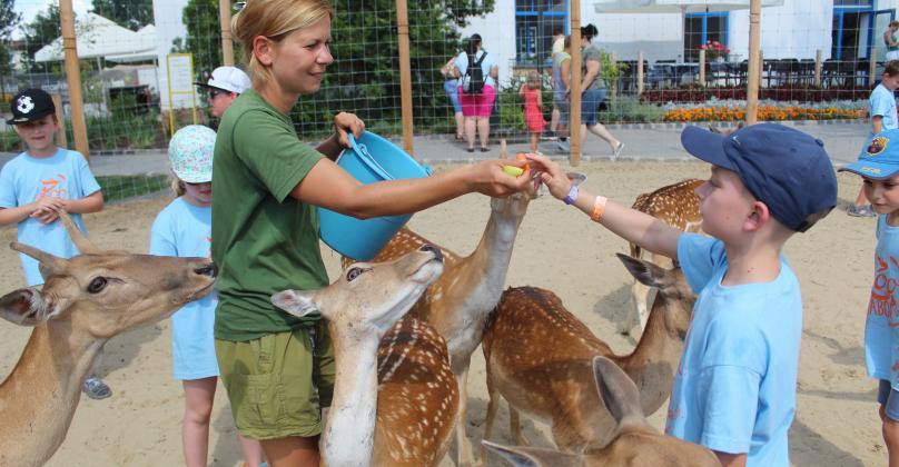 Zoo Tábor az őszi szünetben