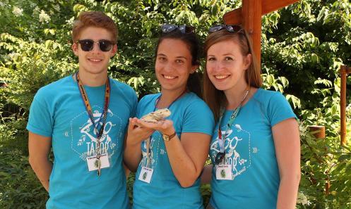 Nyári napközis táborainkba gyerekcsoport-kísérőket keresünk!