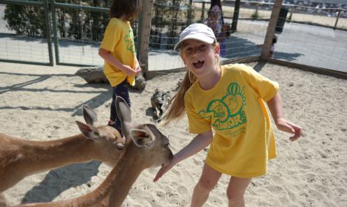 Tavaszi Zoo Tábor 2016. március 24-25.