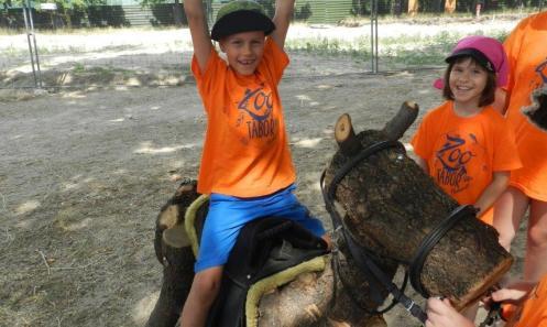 Aktuális híreink az idei Zoo Táborról
